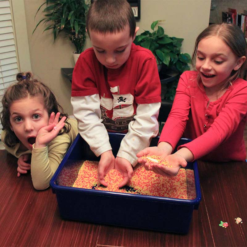 Toys and Tools for Teaching - Sensory Bin