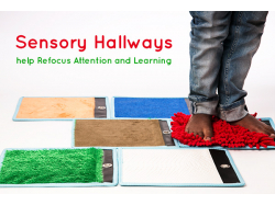 Sensory Hallways Help Refocus Attention and Learning